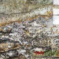 Đá Granite Kamarica